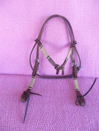 Rawhide futurity knot bridle